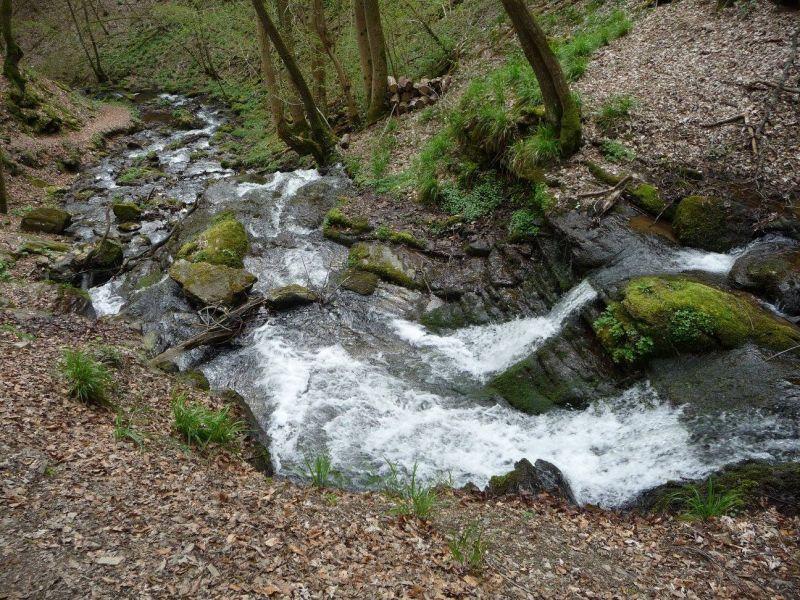 Een vallei verderop (Hunolstein) zijn watervalletjes te vinden